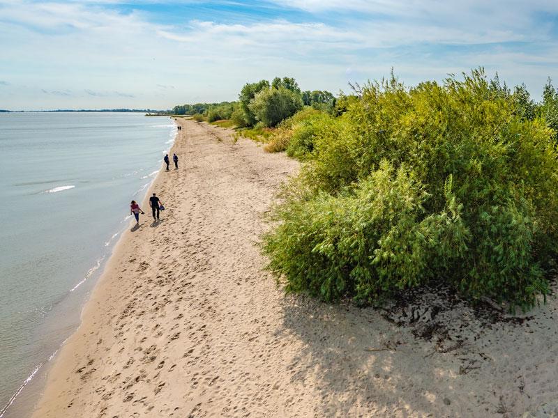 Der lange Sandstrand der Elbinsel Krautsand