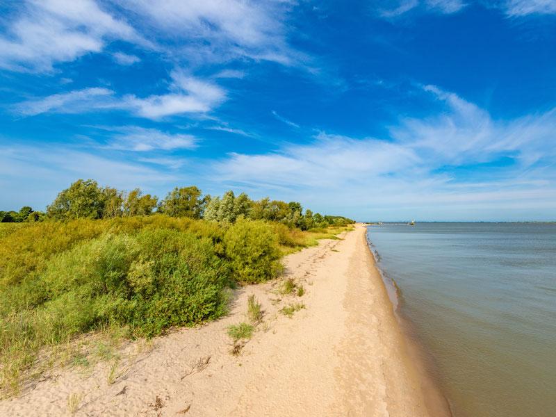 Die Elbinsel Krautsand - Elbe im Sommer
