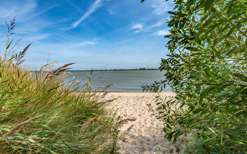 Elbstrand Resort Krautsand - Urlaub am Strand